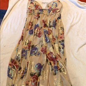 Stunning FREE PEOPLE Maxi Dress Sheer Floral Sz 8